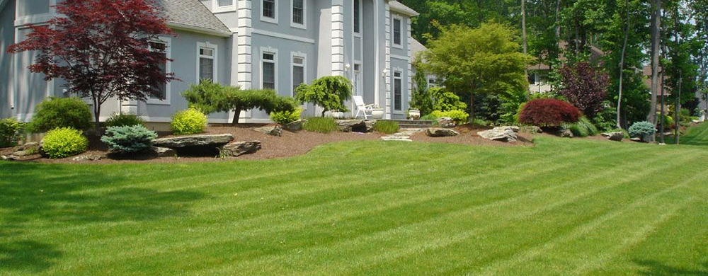 Prodrainage Com Northern Va S French Drain And Landscaping Experts